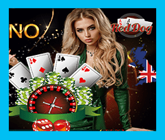 red dog casino roulette  gamedaycamps.com